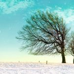 Snow couple quietly dating wallpaper
