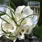Belay flowers with champagne hd wallpaper