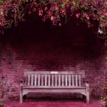 Garden flowers benches natural scenery wallpaper