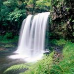Waterfall in national park wallpaper