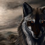 Furious wolf hd wallpaper