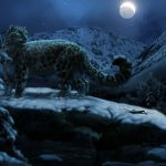 Snow leopard in the moonlight wallpaper