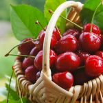 Fresh,cherry,fruit,sweet,leaves,basket,green background,desktop wallpaper