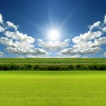 Beautiful grassland hd wallpaper