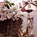 Bicycle with a basket of flowers wallpaper