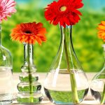 Flowers in vases wallpaper