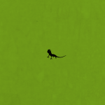 Small lizard wallpaper