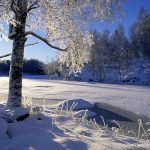 Winter snow scene desktop background picture
