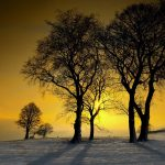 Winter sunshine beautiful scenery desktop wallpaper