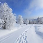 Winter wild snow scenery natural scenery desktop wallpaper