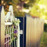 Flowers and beautiful desktop wallpaper on the fence