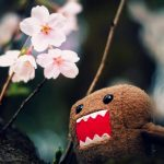 Cute dolls beautiful wallpaper pictures
