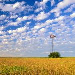 Country Field, Illinois wallpaper
