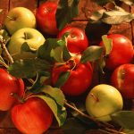 Red apples with a twig desktop wallpaper