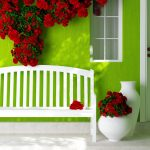 Door, window, bench, flowers, green background wall, warm home desktop wallpaper