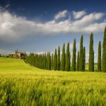Italian farm landscape eye protection desktop wallpaper
