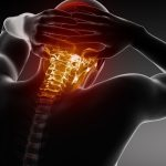 Cervical vertebrae wallpaper