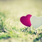 Two hearts on the grass hd wallpaper