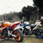 motorcycles near the forest wallpaper