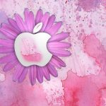 Creative Apple Computer HD Wallpaper Background Picture