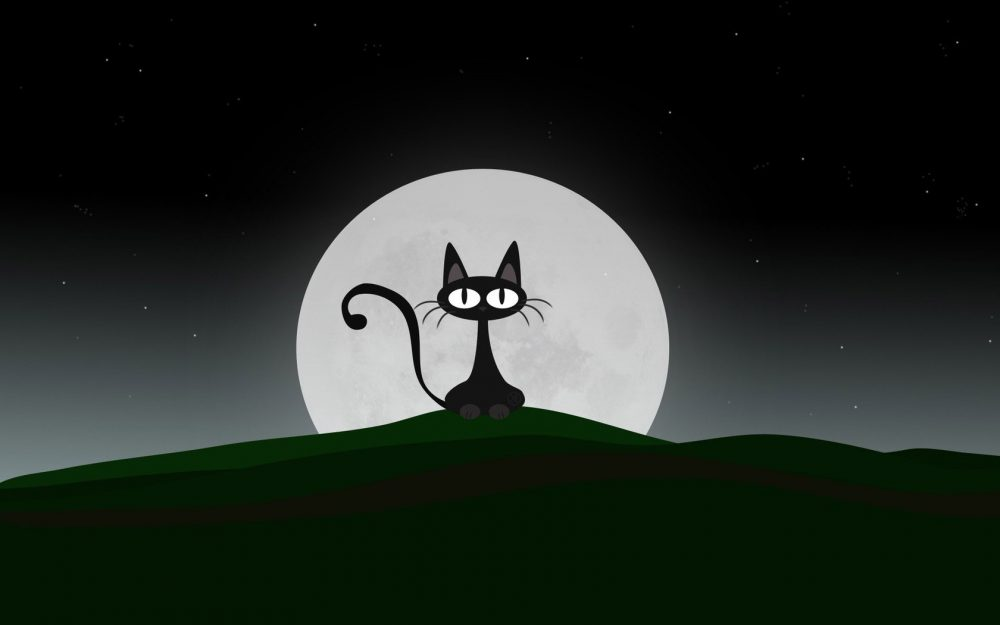 Cute kitten cartoon wallpaper