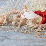 sand, Marine, shells, wood, starfish, still life, Seashells, perl, pearl