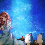 Penguin girl beautiful anime night sky desktop wallpaper
