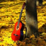 Autumn maple forest leaves guitar landscape desktop wallpaper