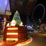 holiday park, decorations, tree, new year