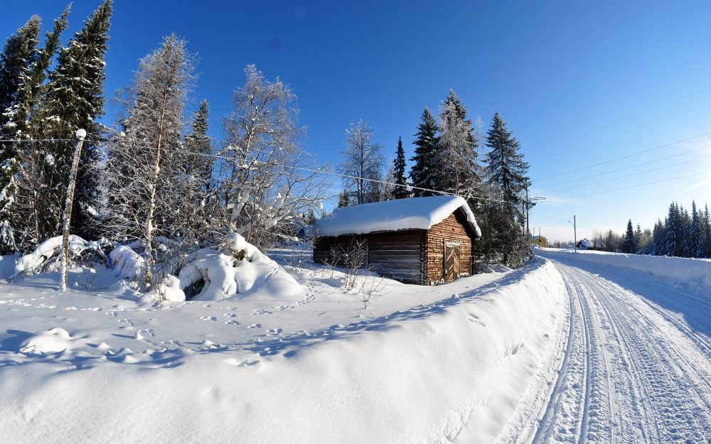 nature trees winter snow house wallpaper