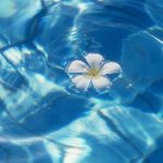 Small white flowers on blue waves desktop background