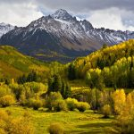 Trees, forest, mountains, autumn