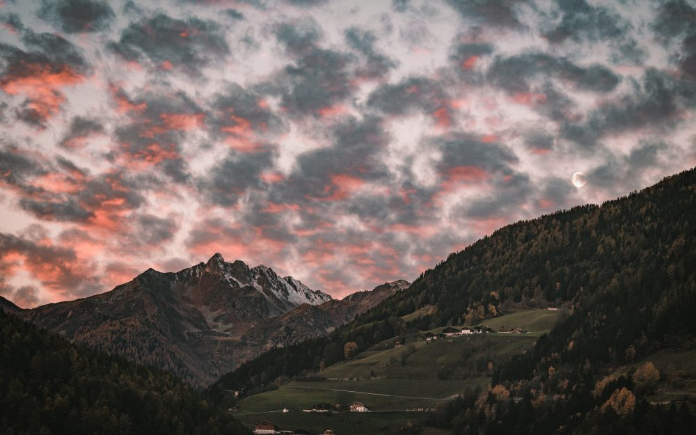 trees, forest, mountain, clouds, village hd wallpaper