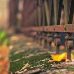 Autumn leaves under the fence beautiful desktop wallpaper