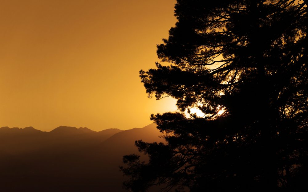 The sky, photos, view, tree, trees, landscapes, mountains
