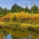 Forest, river, clouds, autumn, water, sky