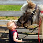 baby and ponies wallpaper