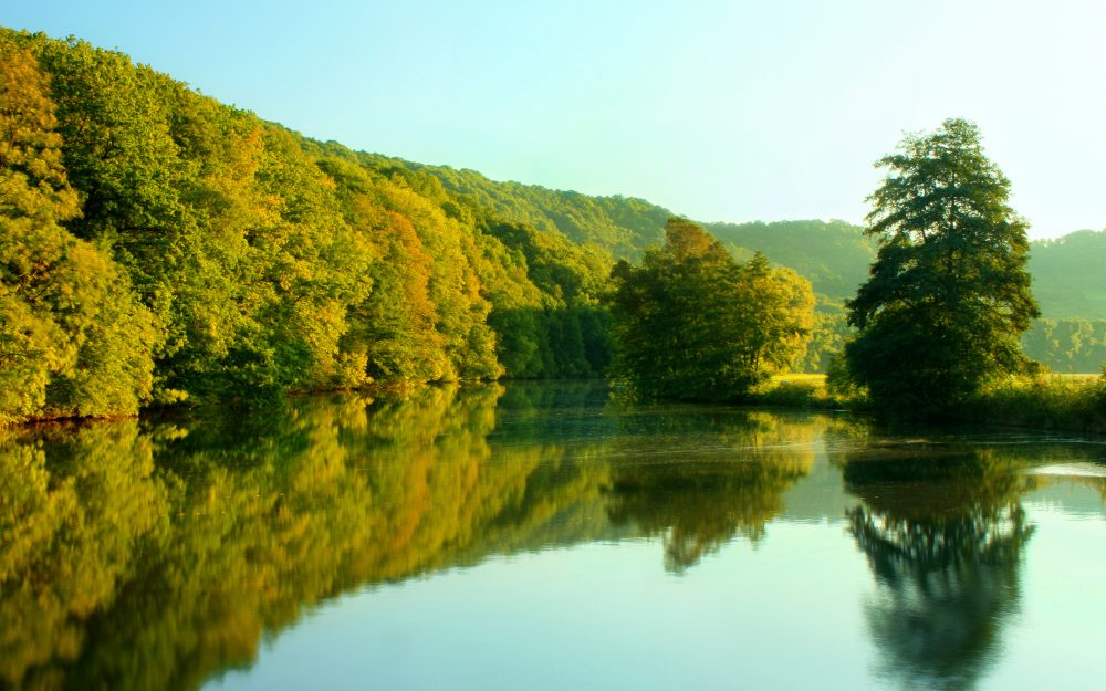 Forest, autumn, the lake