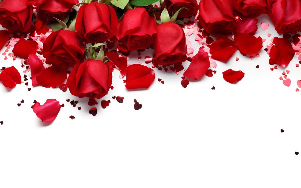 Red, roses, red roses, hearts, Valentine's Day, gift