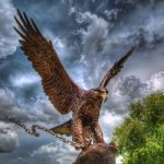 Sculpture, eagle, sky