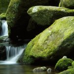 Gurgling streams HD Landscape wallpaper download