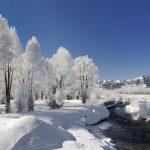 Landscape wallpaper white winter