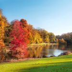 autumn, park, landscape, fall season, landscape, autumn