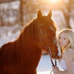 Beauty and horse wallpaper