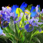 flowers, abstract, flower bed