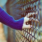 Fences beautiful wallpaper