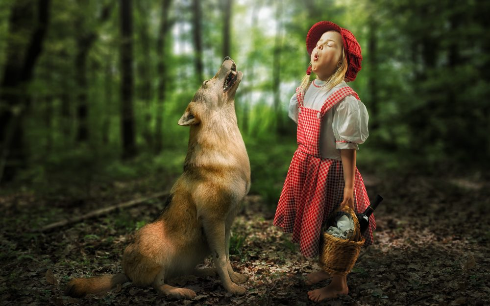 meeting, girl, situation, Little Red Riding Hood