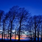 Winter evening sunset trees Landscape wallpaper