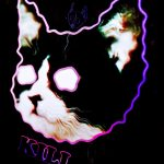 drawing, neon, face, cat