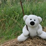 White bear on the hay wallpaper